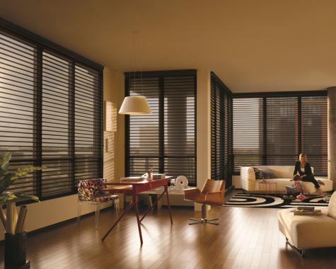 Cortina Silhouette® - Hunter Douglas -  Living (sala)